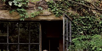 woman standing inside the doorway of a vine covered studio