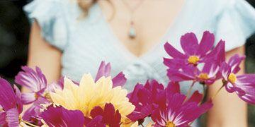 yellow and fuschia flowers