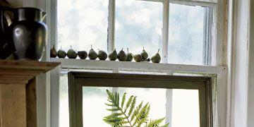 fern in picture frame near windowsill