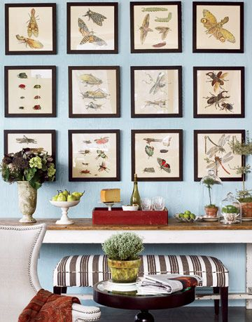 picture frames on blue wallpaper