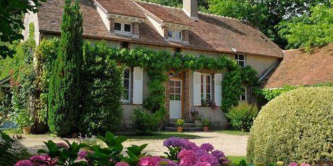 Window, Plant, Shrub, House, Property, Garden, Building, Home, Door, Real estate,