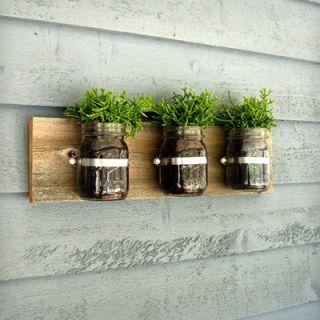 Wall, Flowerpot, Houseplant, Vase, Still life photography,