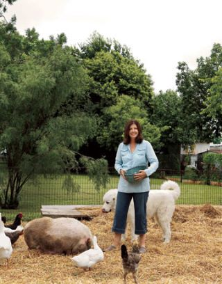 woman feeds her animals on a farm