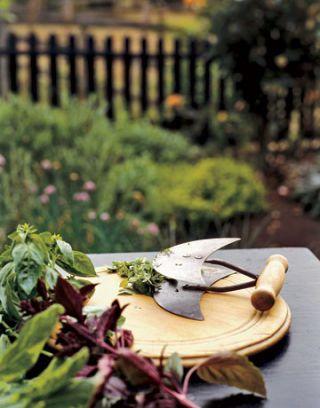 mezzaluna chopper on wooden cutting board next to fresh herbs