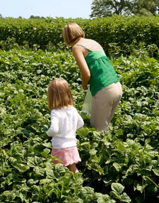 mom and daughter picking food