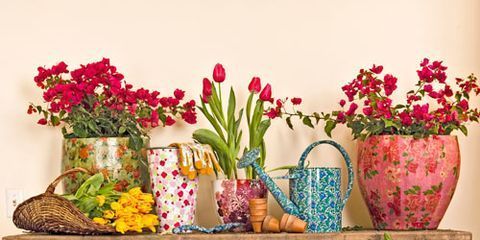 flowers roses tulips in floral buckets and vases