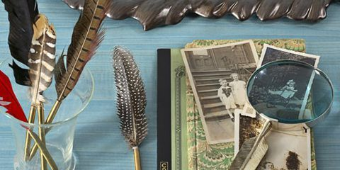 feather pens feather tray feather magnifying glass