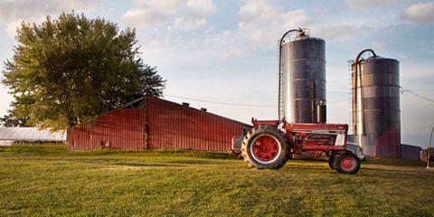 Sky, Farm, Agricultural machinery, Agriculture, Field, Rural area, Plain, Land lot, Grassland, Plantation,