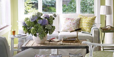 & Window Treatments - Ideas for Window Treatments