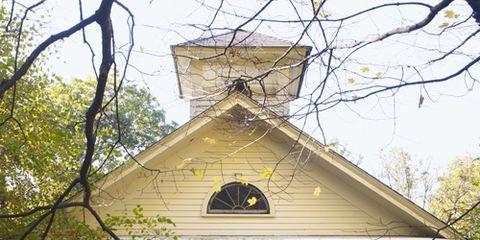 Branch, Property, House, Leaf, Home, Real estate, Building, Roof, Door, Twig,