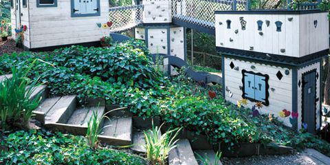 Roof, Groundcover, Shrub, Outdoor structure, Garden buildings, Landscaping, Perennial plant, Shed, Herb,