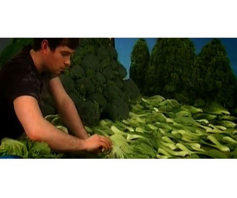 bok choy sea making of carl warner foodscape