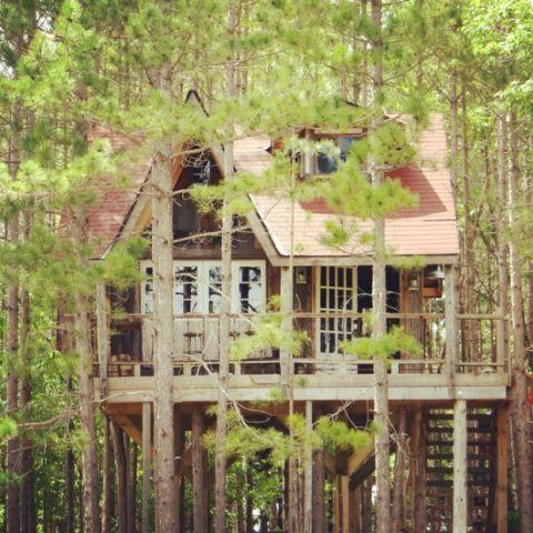 Treehouse Escape In Canada Unique Vacation Rentals