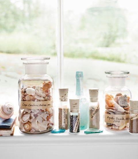 display shell collection