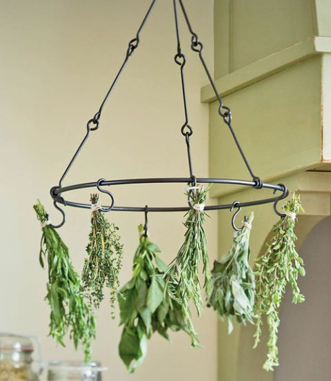 herbs hanging from a circular steel drying rack with six hooks