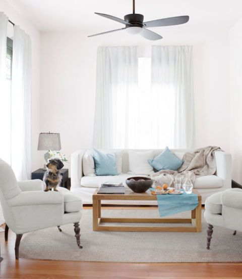 Wood, Blue, Room, Interior design, Floor, Living room, Flooring, Home, Furniture, Textile,