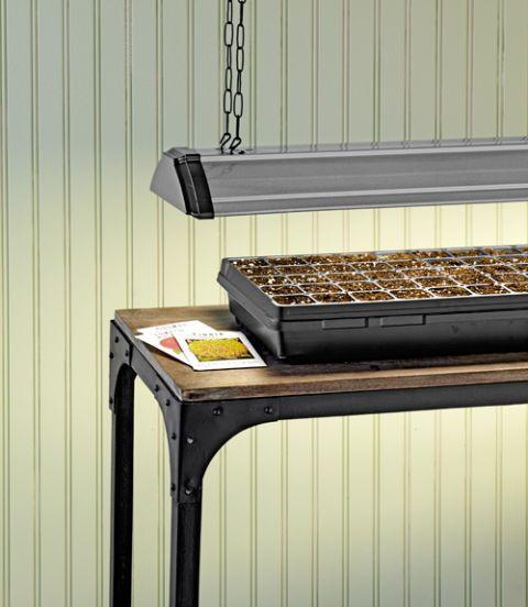 seed starter tray lamp