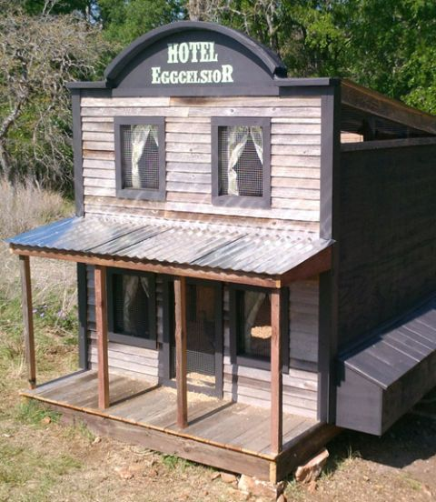 Best Chicken Coop Designs Most Amazing Coops