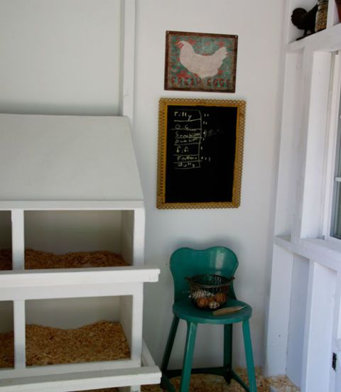 Furniture, Wall, Teal, Picture frame, Wood stain, Paint, Shelf, Shelving, Collection, Molding,