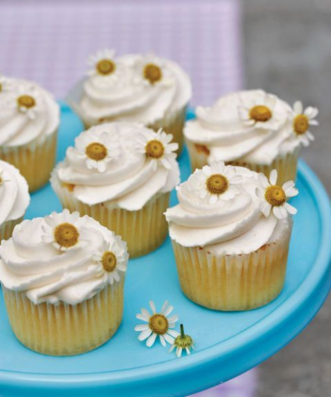 cupcakes with chamomile flowers on top