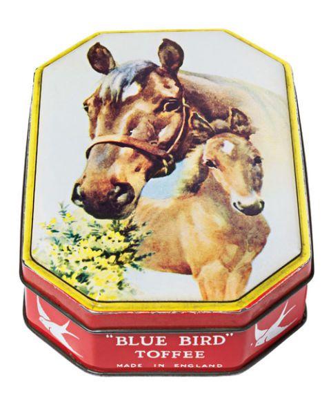 horse blue bird toffee tin