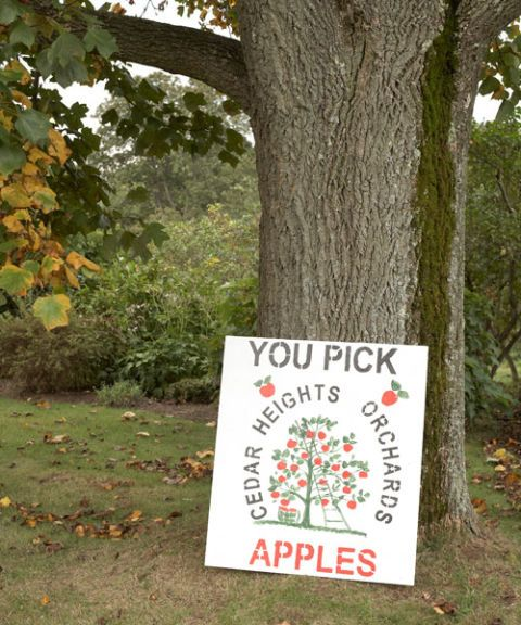 cedar heights orchards sign you pick apples