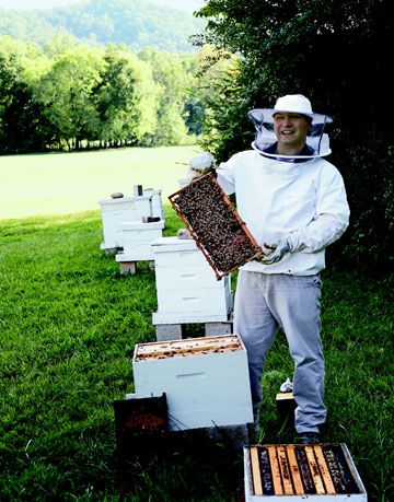 a beekeeper in a white outfit displaying bees from white hives