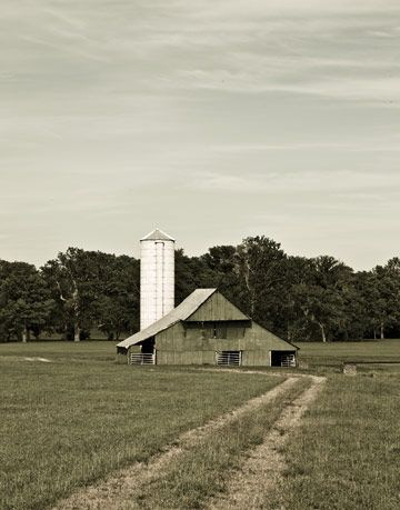 barn and silo in a field