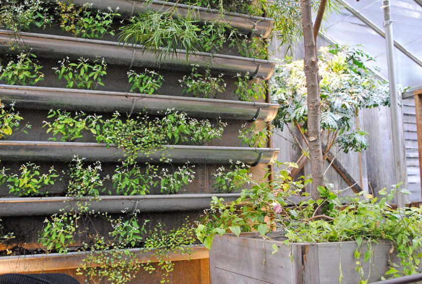 gardening what vertical grow green is hydroponic wall food garden
