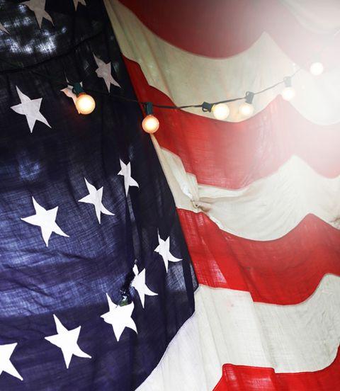 Flag of the united states, Flag, White, Red, Tree, Veterans day, Sleeve, World, Uniform, T-shirt,