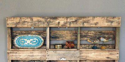 Teal, Shelving, Natural material, Flowerpot, Houseplant, Collection, Shelf,