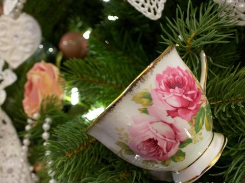 Pink, Christmas decoration, Petal, Flowering plant, Christmas, Rose family, Pine family, Holiday, Garden roses, Rose order,