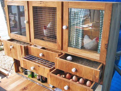 Image result for Inside a chicken coop