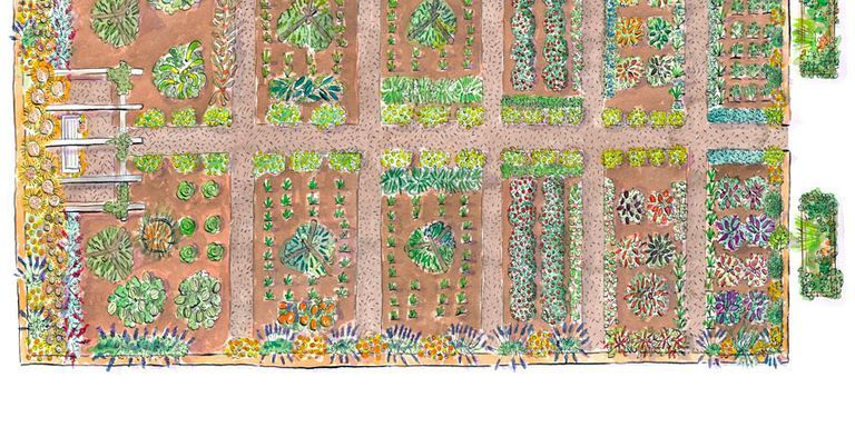 Garden Illustration Awesome Ideas