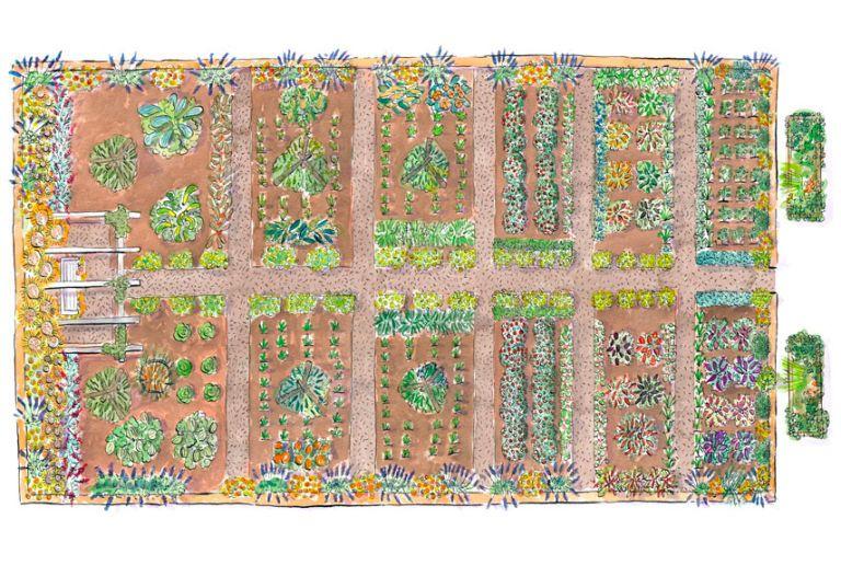 Superior Garden Illustration
