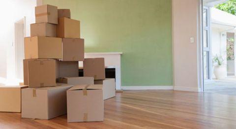 Wood, Floor, Flooring, Property, Wall, Hardwood, Wood flooring, Laminate flooring, Wood stain, Fixture,