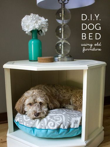 19 Adorable Diy Dog Beds How To Make