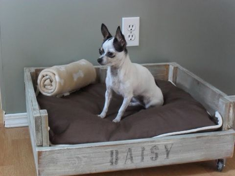 Super 19 Adorable Diy Dog Beds How To Make A Cute Cheap Pet Bed Short Links Chair Design For Home Short Linksinfo