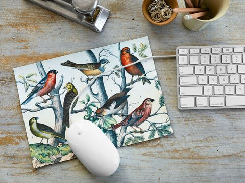 illustrated birds mouse pad