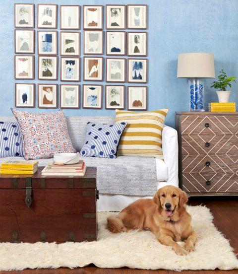 Pet Friendly Home Decor: Dog Friendly Decorating Ideas