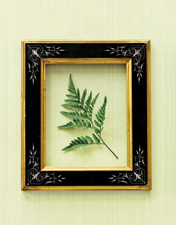 black and gold picture frame around a fern leaf