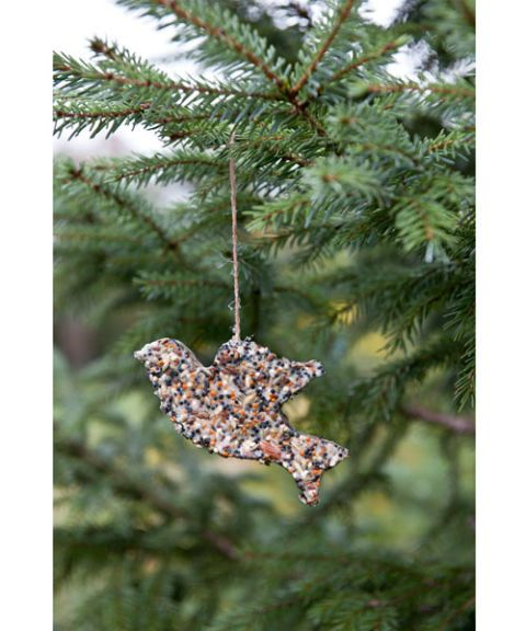 homemade bird seed christmas ornament - Bird Ornaments For Christmas Tree