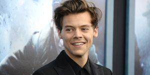 Harry-styles-heeft-vier-tepels
