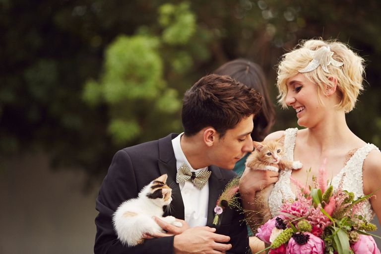 14 photos of a kitten themed wedding that are too good to be true courtesy of happily wedding josh madson junglespirit Gallery