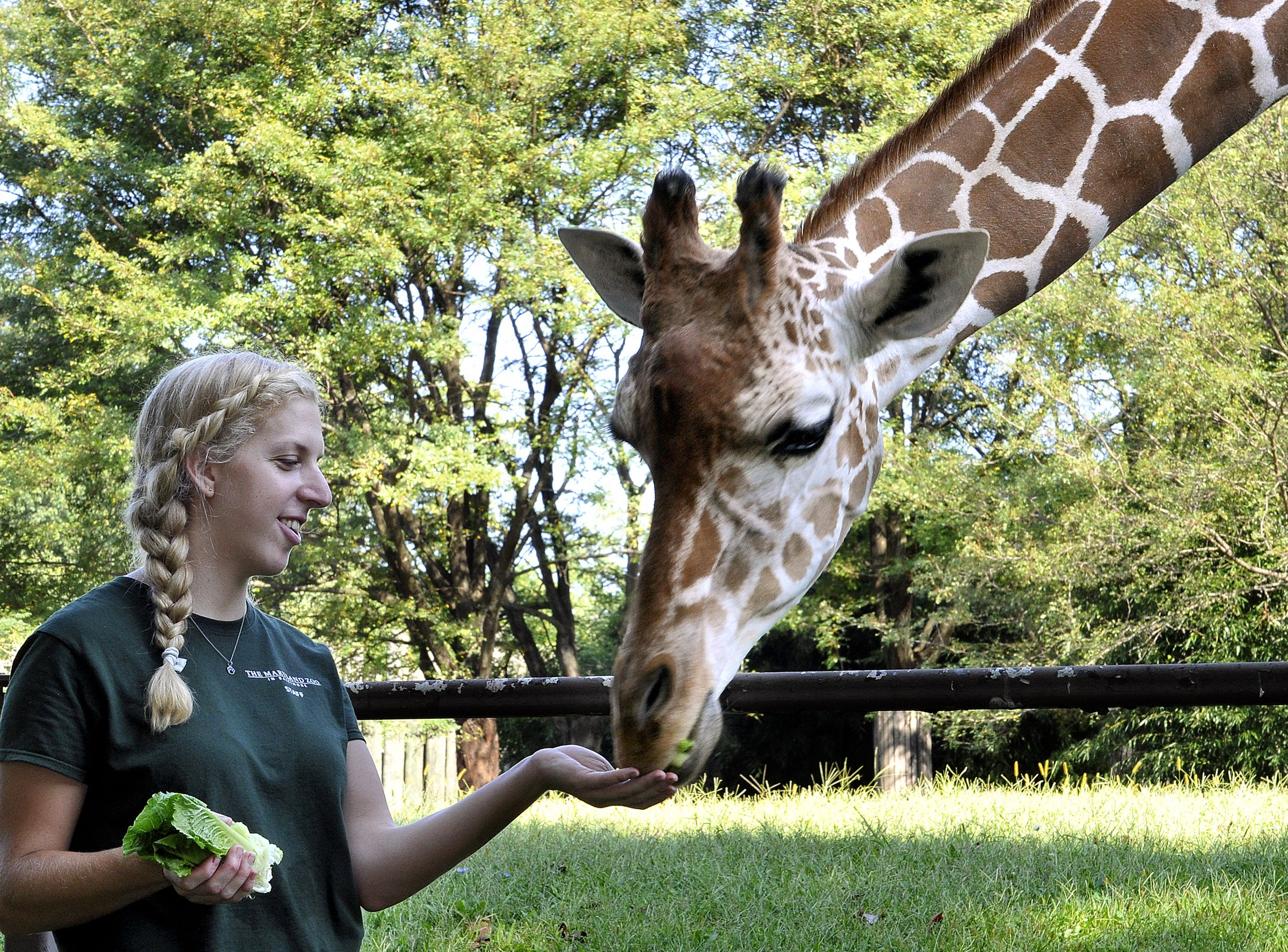 Get That Life How I Became A Zookeeper - 20 hilarious photos of what zookeepers get up to after closing hours