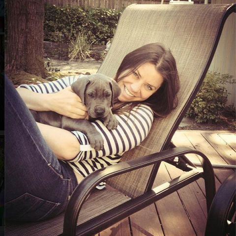 Comfort, Dog breed, Carnivore, Mammal, Dog, Sitting, Vehicle door, Tints and shades, Companion dog, Canidae,