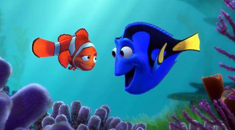 Finding Nemo, Dory