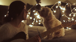 Woman Sings Christmas Song to Her Dog, Dog Loves It the Most