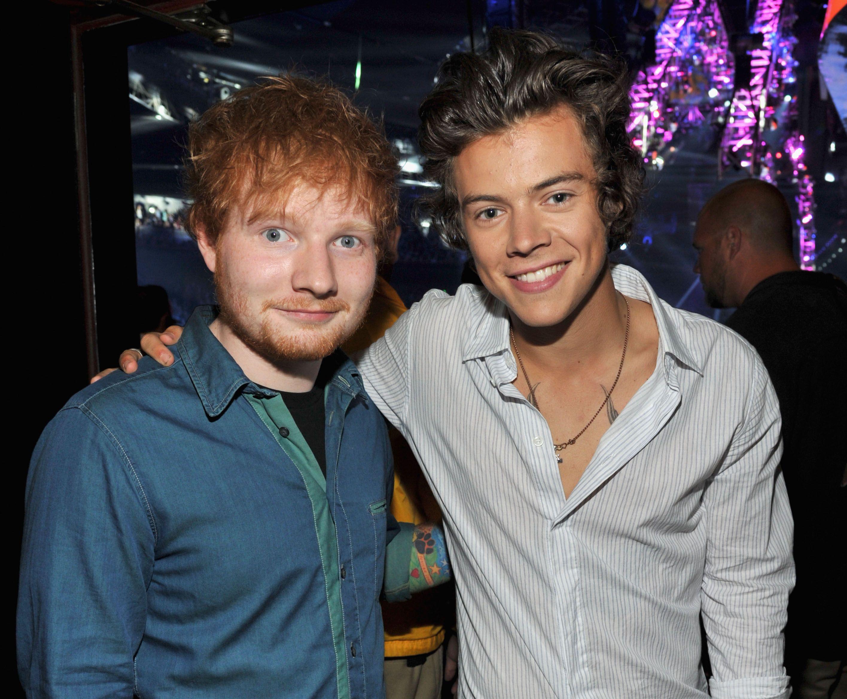 Harry styles dick
