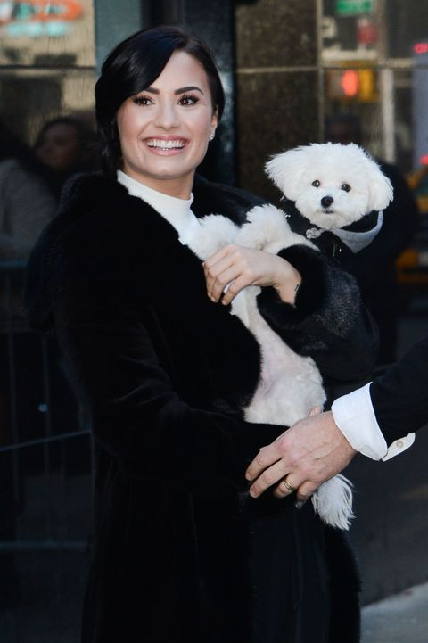 Demi Lovato With Dog